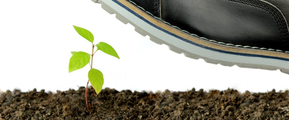 Seed Funding and Signalling Risk: How to Avoid Killing Your Series A